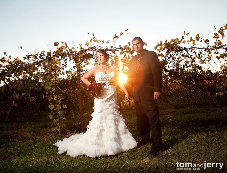 Vineyard Wedding Missouri - Tom and Jerry - Wedding Dress Ideas